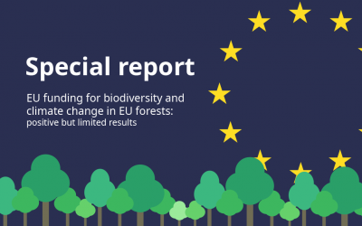 ECA Special Report 21/2021 – New recommendations to the EU on timber legality